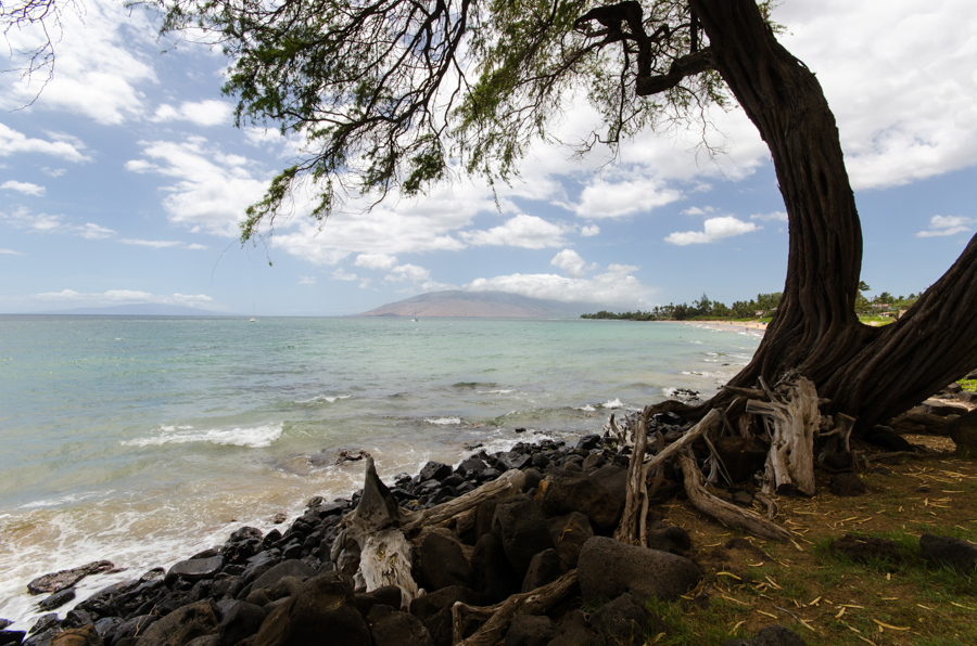 top pictures of maui